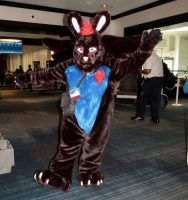 Hall Costume rabbit
